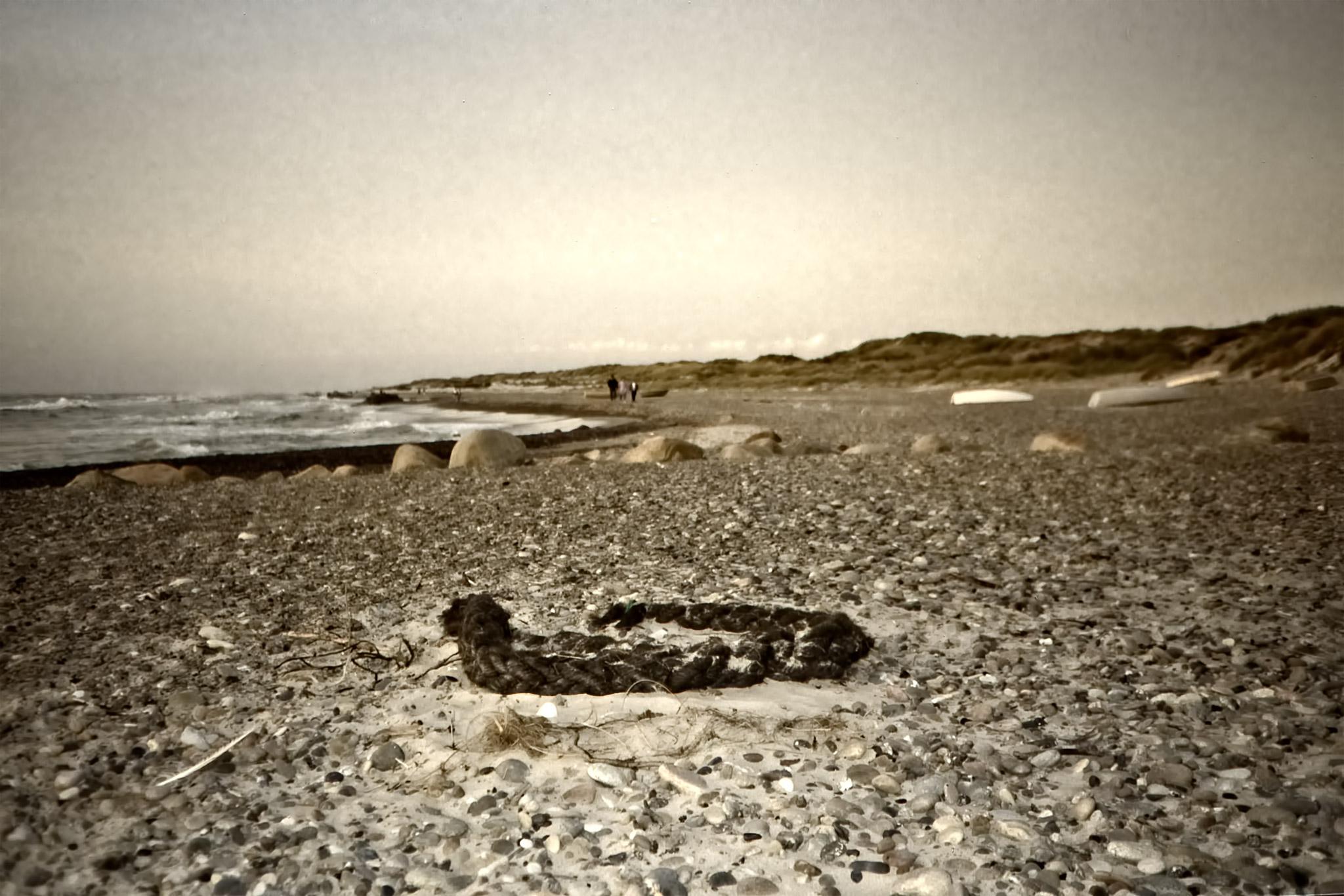 Strandfynd på stranden vid GamlaSkagen.