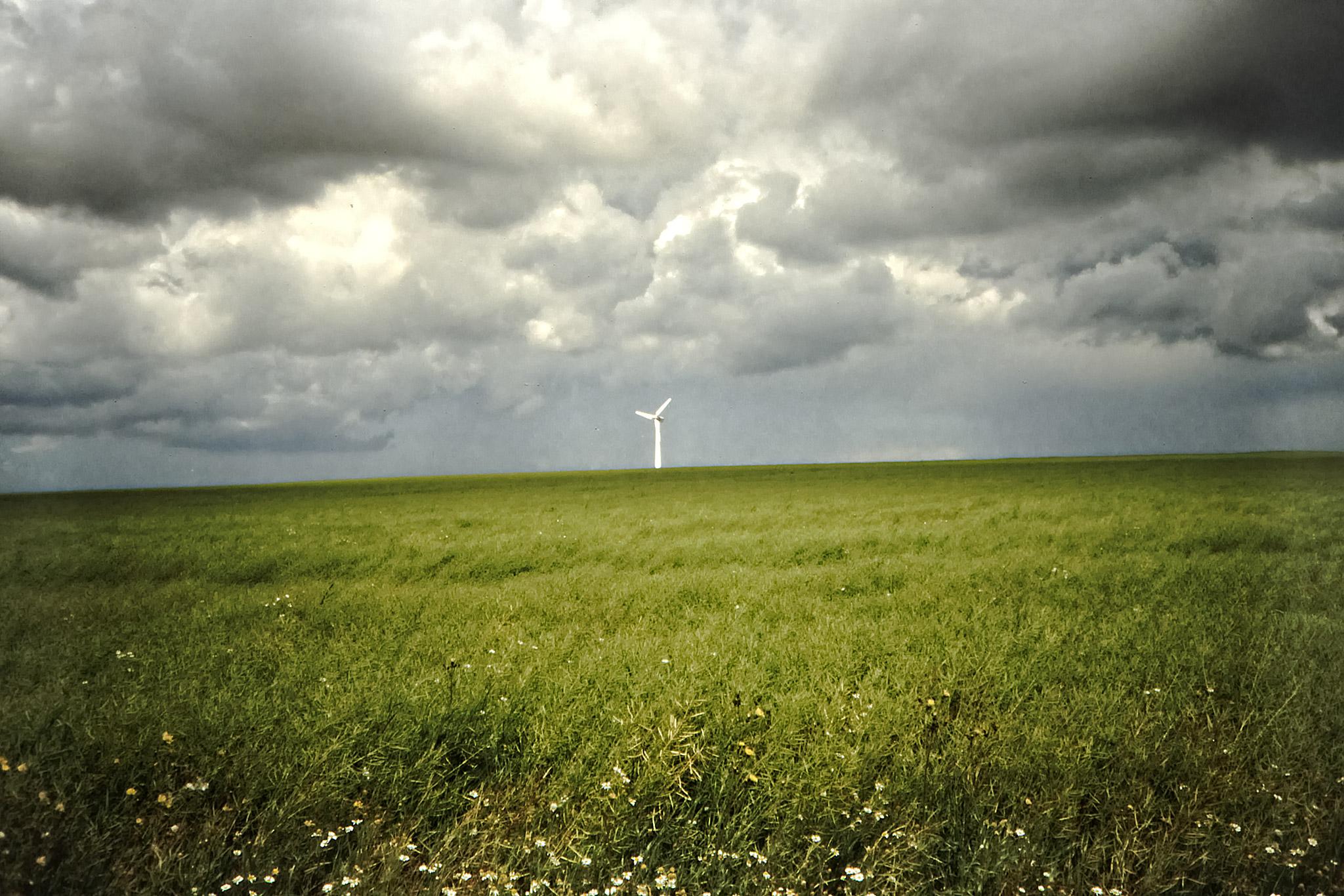 Ett vindkraftverk på Jyllands västkust.