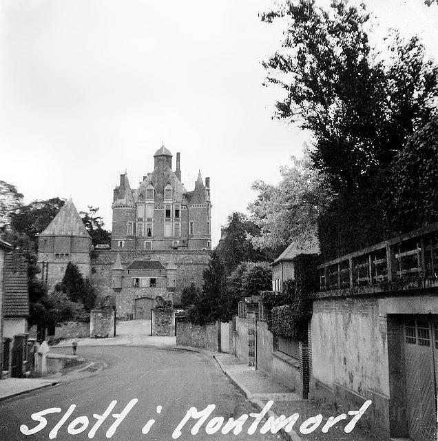 Slott i Montmort