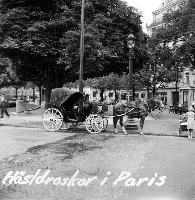 Hästdroska i Paris