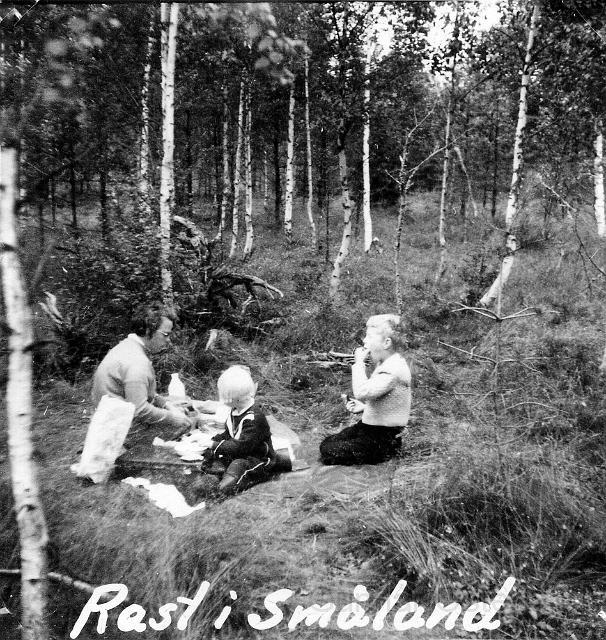 Matrast i Småland