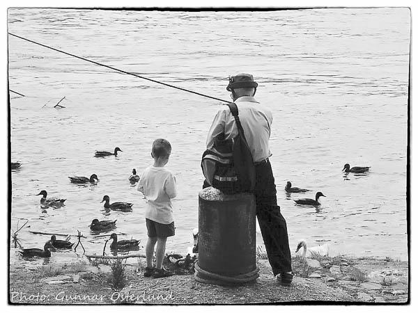 Fiske eller andmatning?