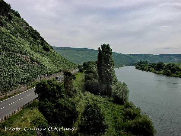 Mosel uppströms innan Trier