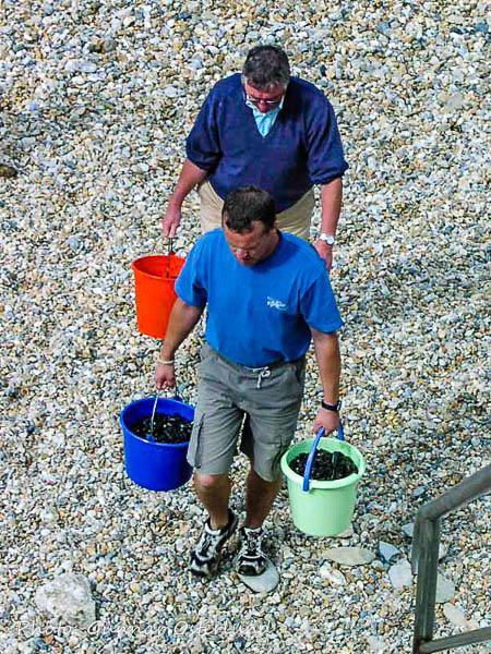 Dessa musselplockare gick inte hem tomhänta.
