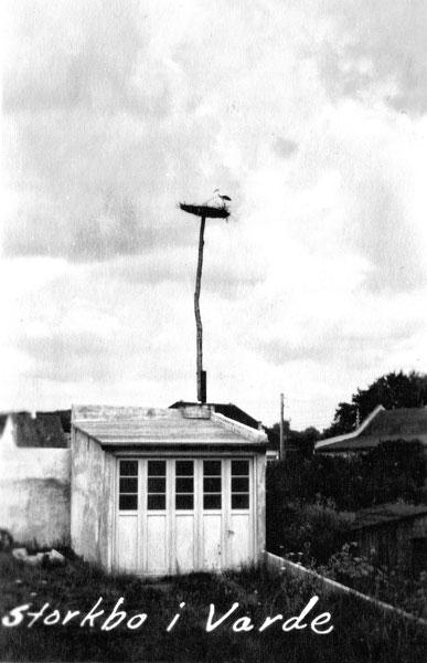 Storkbo i Varde