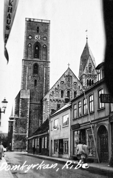 Domkyrkan i Ribe