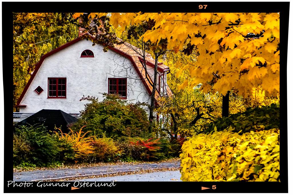 Hösten tar tagit ett grepp om Strängnäs