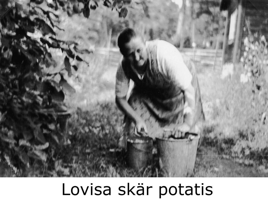 Lovisa skär potatis
