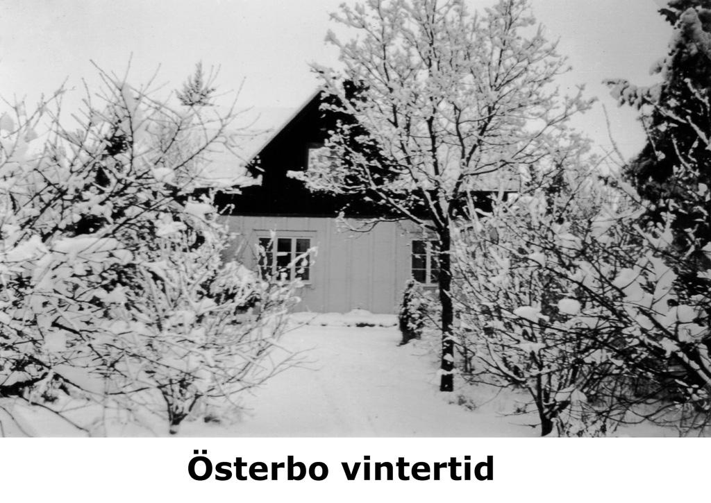 Österbo vintertid