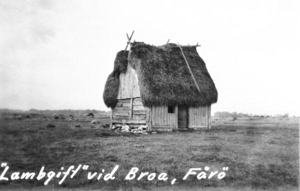 Lambgift vid Broa, Fårö