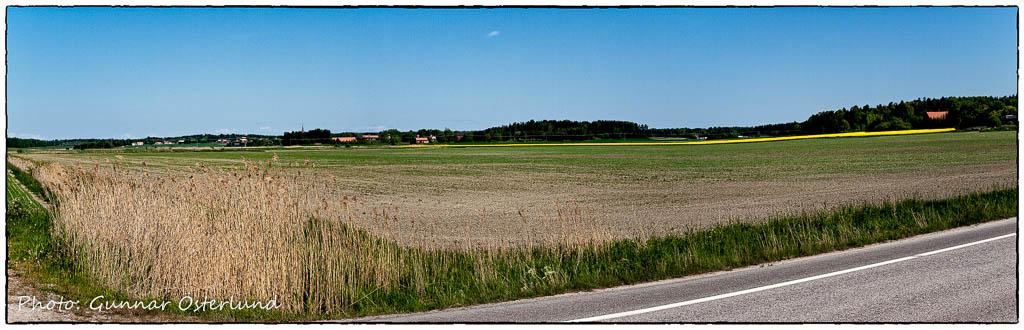 Sommarlandskap utanför Eskilstuna