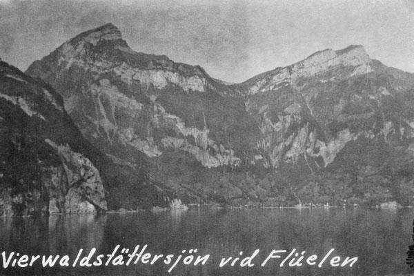 Vierwaldstättersjön vid Flüelen.