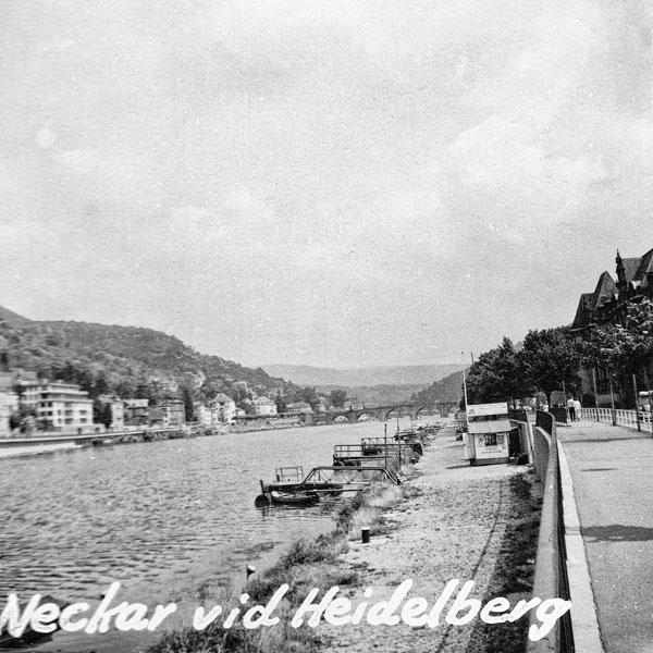 Floden Neckar vid Heidelberg.