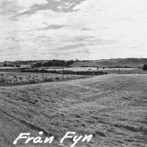 Landskap på Fyn: