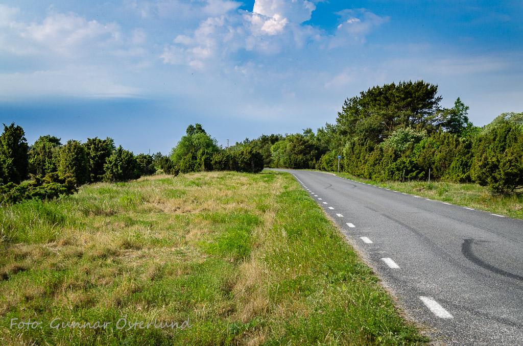 Vägen nära Närshamn.