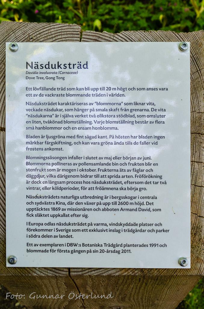 Skylt i botaniska trädgården, Visby.