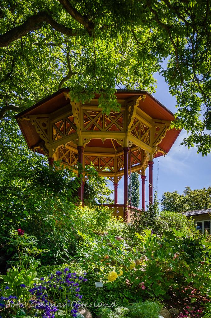 Botaniska trädgården i Visby.