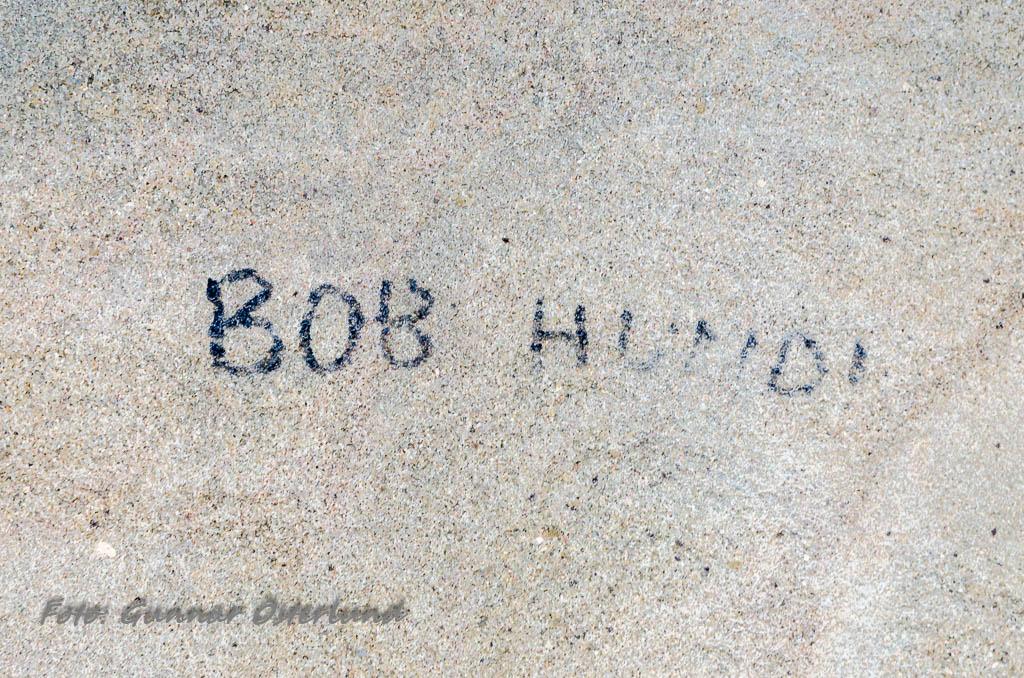 Bob Hund