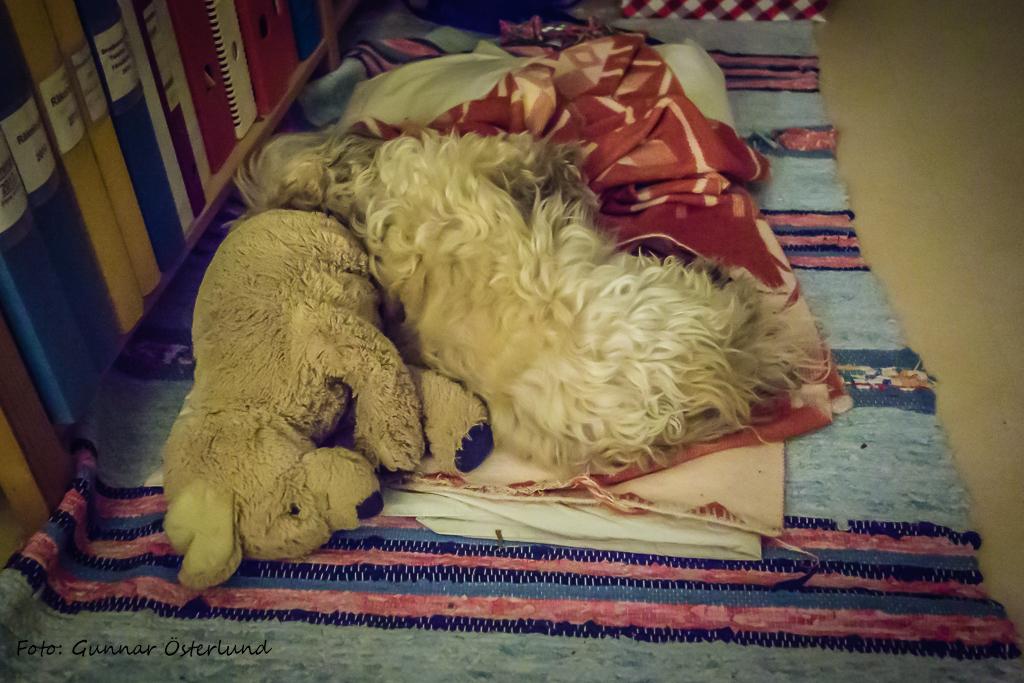 Se sådan sovstil.