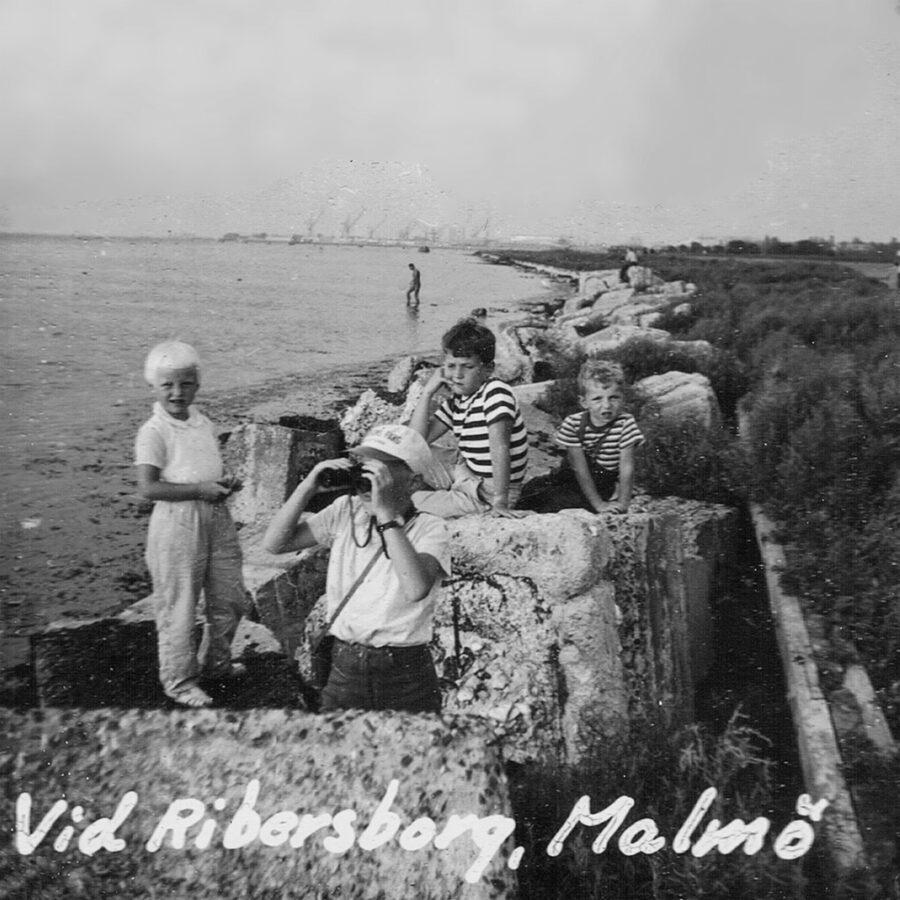 Vid Ribersborg