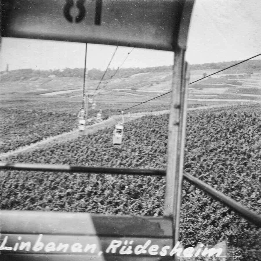 Utsikt från linbanan över Rhendalen