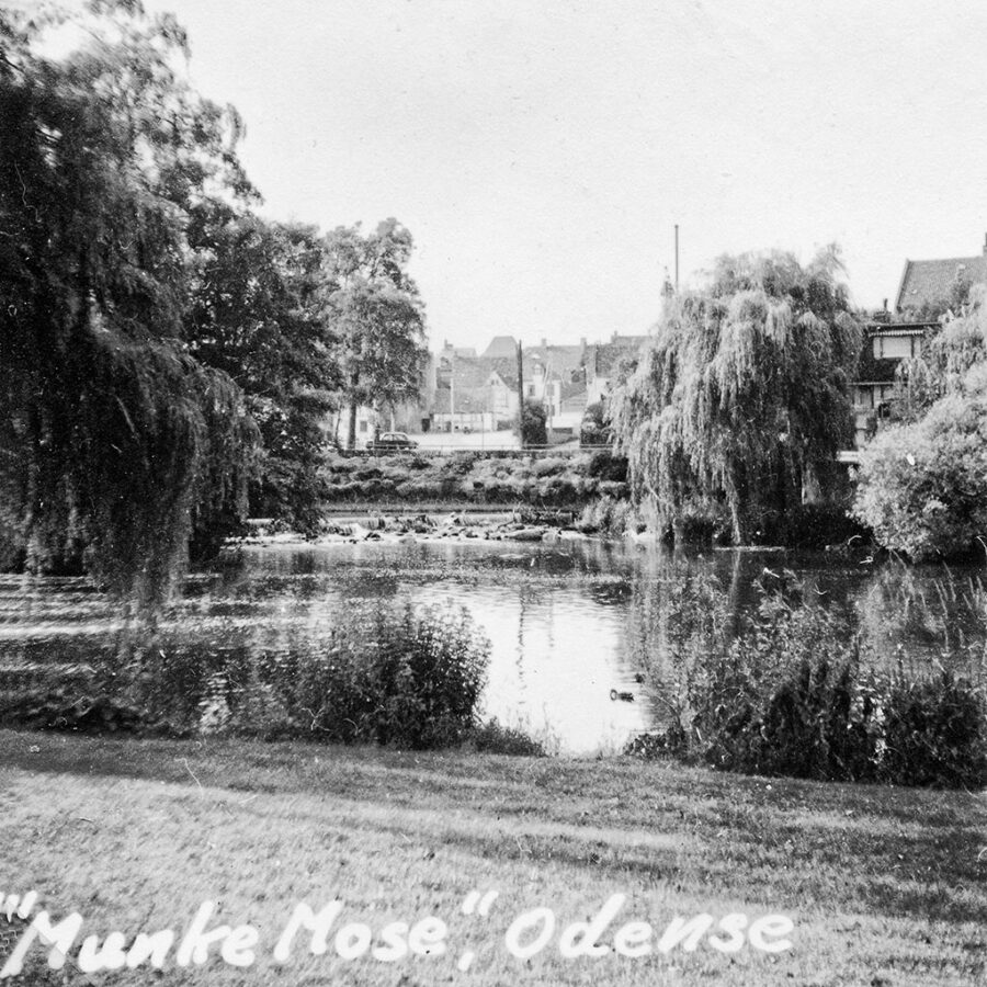 """""""Munke Mose"""", en park i Odense."""