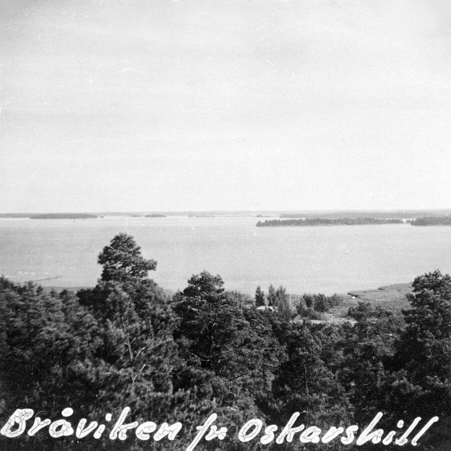 Bråviken sedd från Oskarshill uppe i Kolmården.