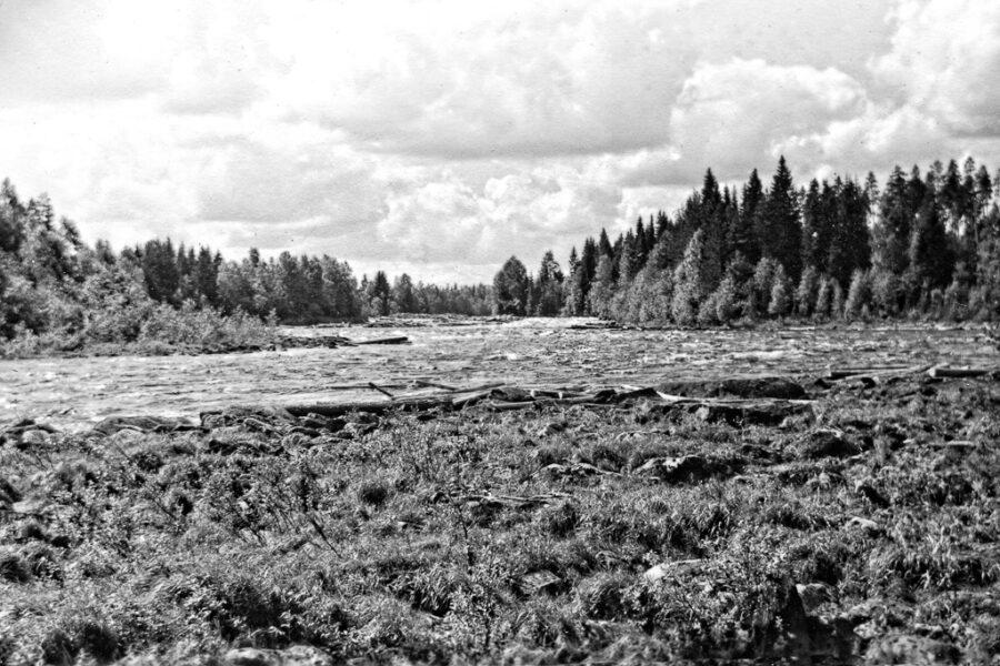 Västerdalälven vid Björbo. Flottning av timmer pågick.